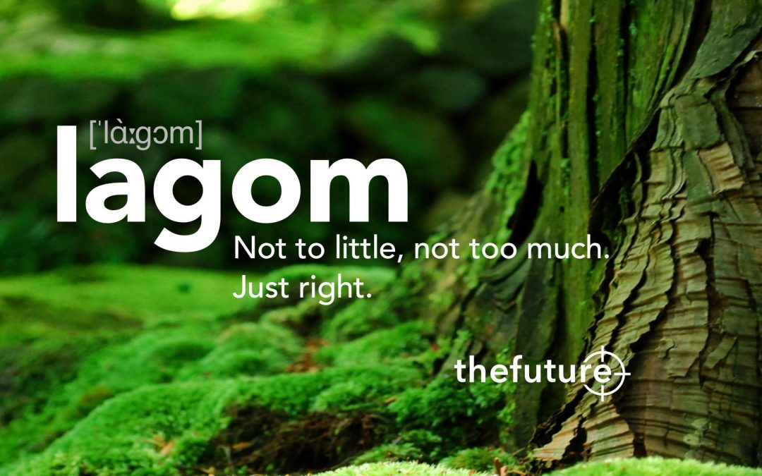 """A """"Lagom"""" lifestyle – We must urgently reduce our Footprint…"""