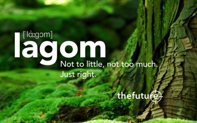 "A ""Lagom"" lifestyle – We must urgently reduce our Footprint…"