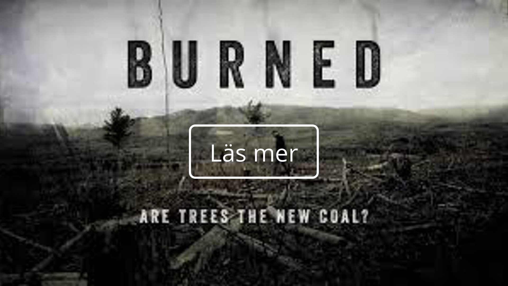 thefuture, resurs, Burned, Are Trees the new coal