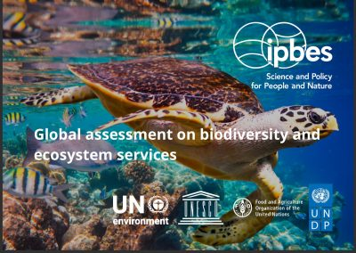 IPBES, Global assessment on biodiversity and ecosystem services