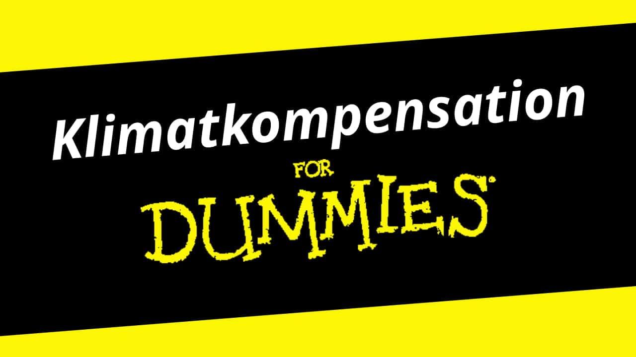 thefuture, nyhet, Klimatkompensation_for_Dummies