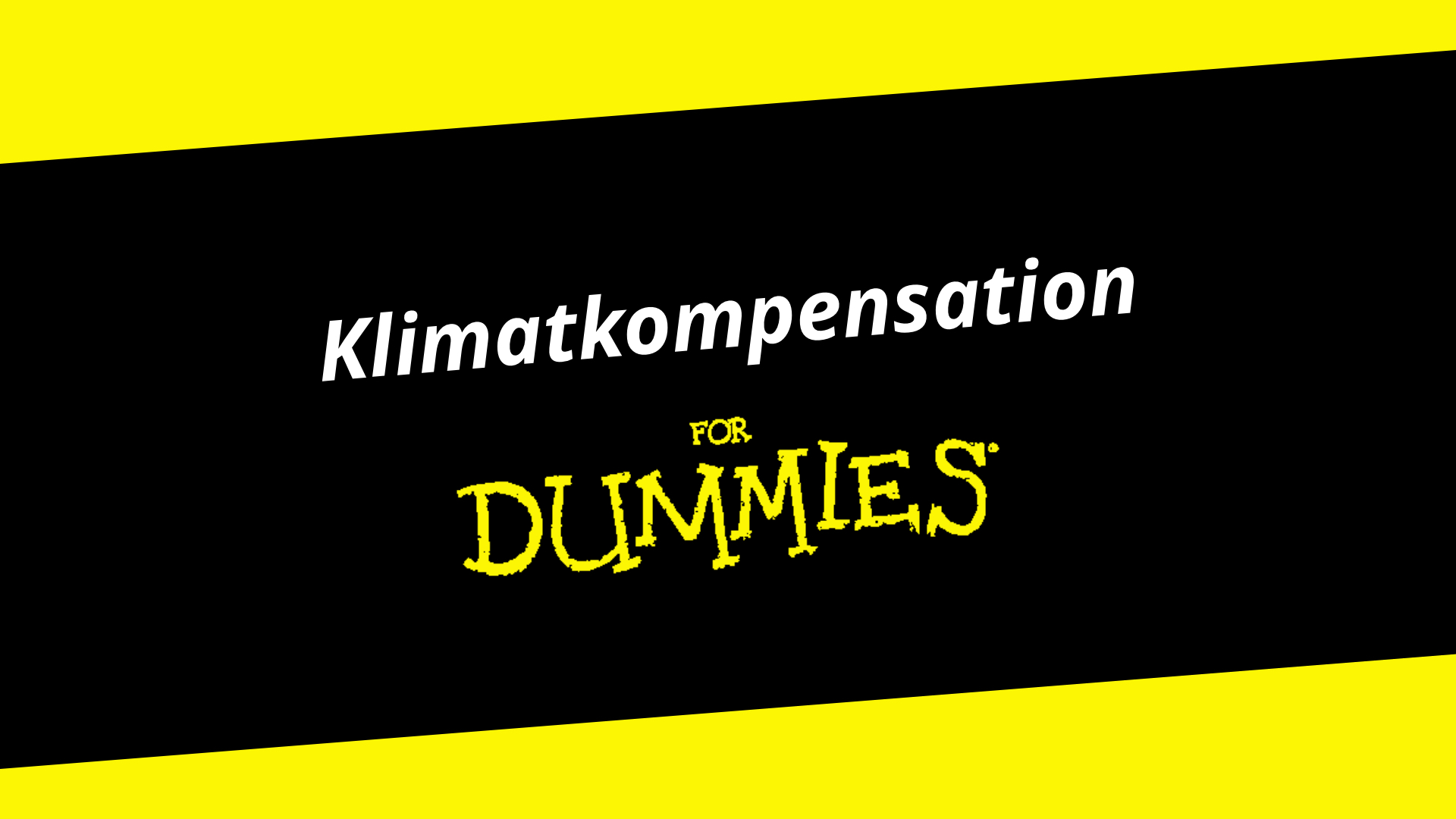 thefuture, resurs, Klimatkompensation for Dummies