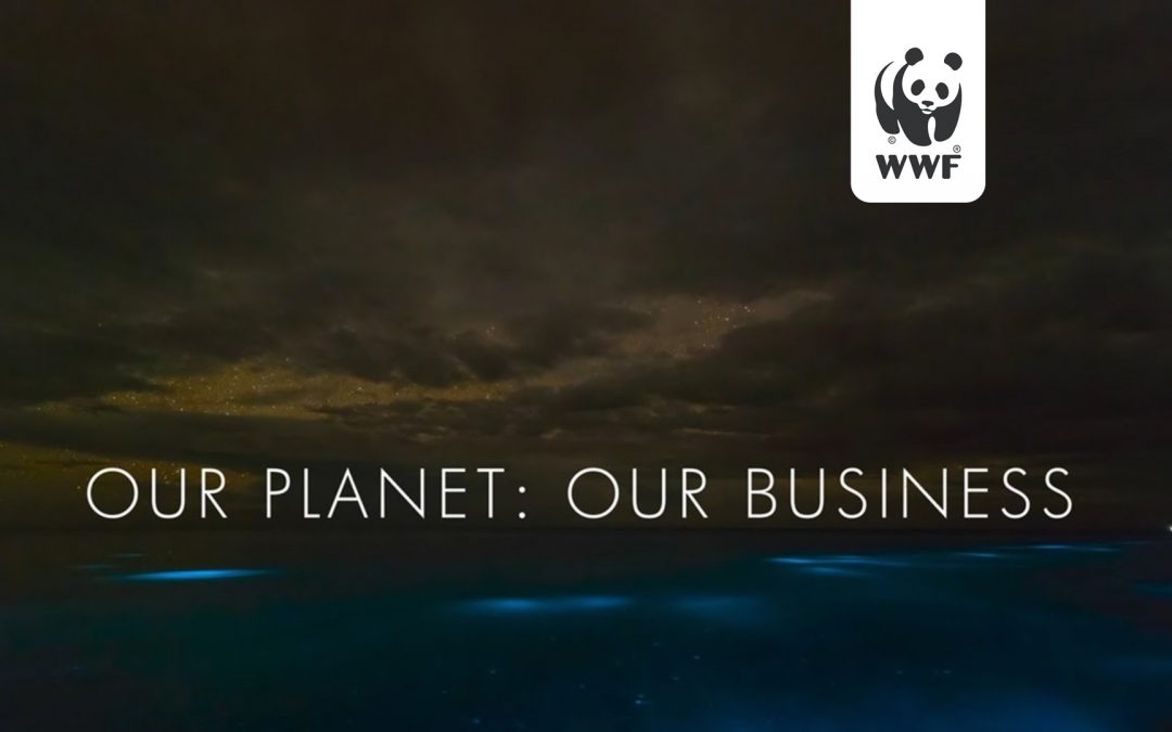 Our Planet: Our Business