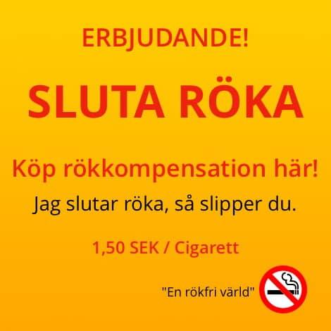 thefuture, blogg, Sluta-Röka