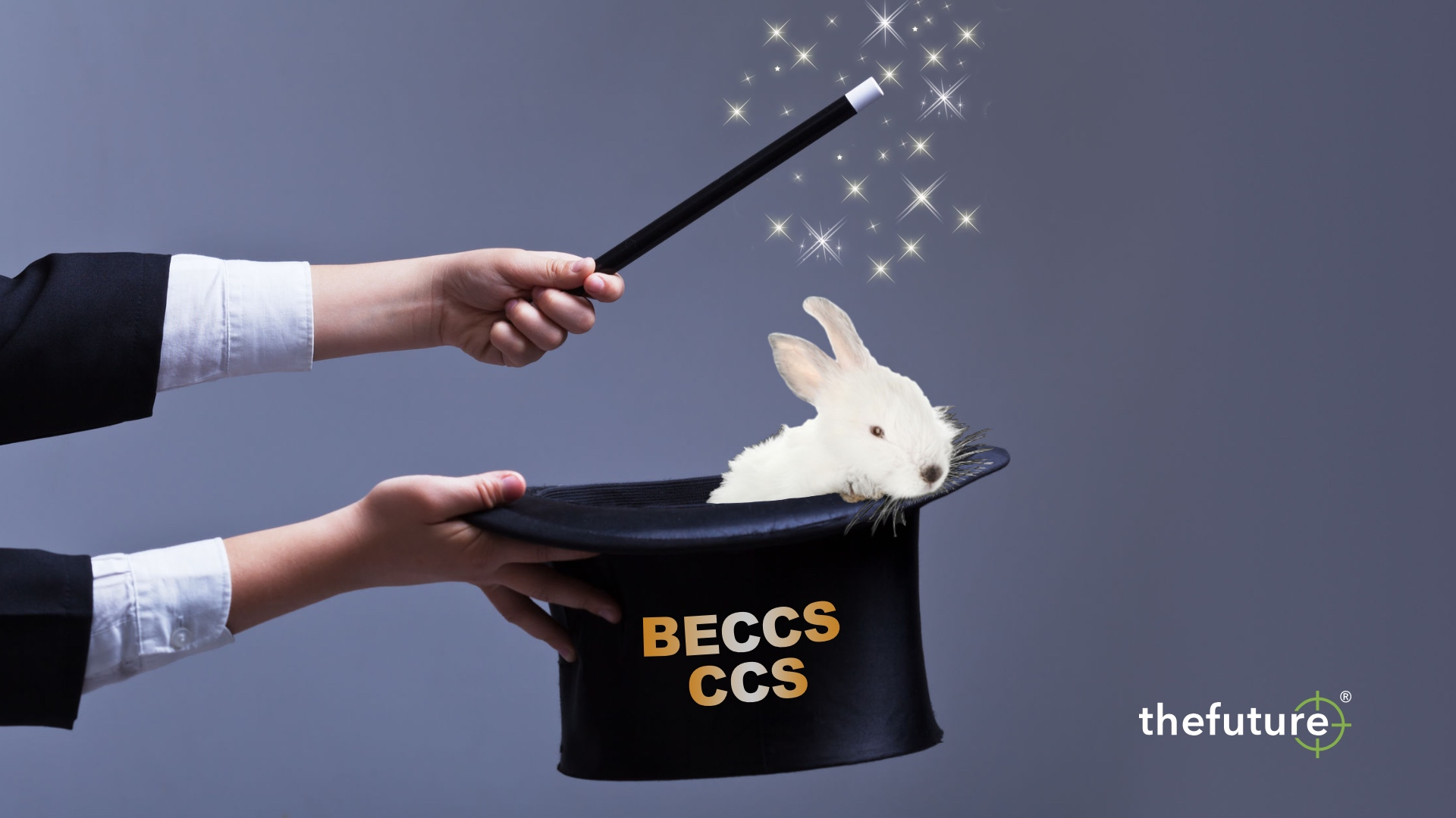 thefuture, blogg, BECCS+CCS