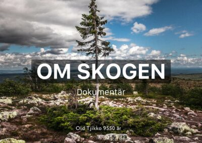 Om Skogen